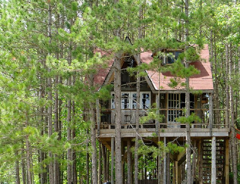 Lynne Knowlton's tree house | www.facebook.com/SmallHouseBliss