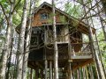 Lynne Knowlton's tree house | www.facebook.com/SmallHouseBliss