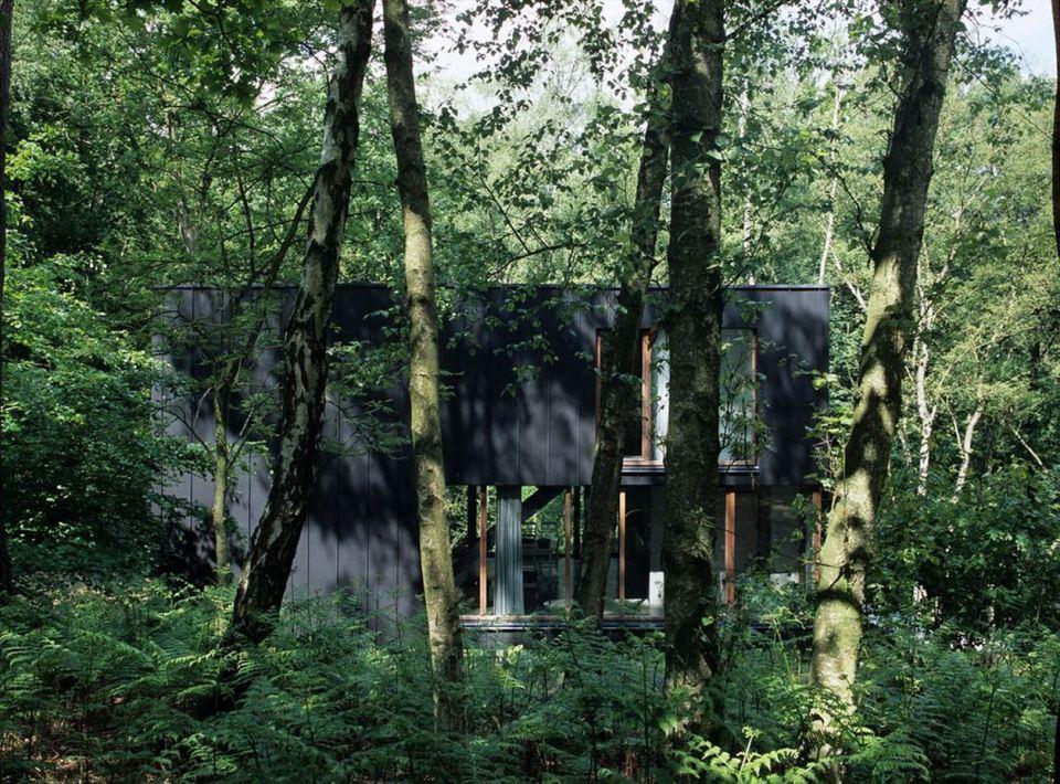 A small modern house in the woods with an urban loft design.   www.facebook.com/SmallHouseBliss