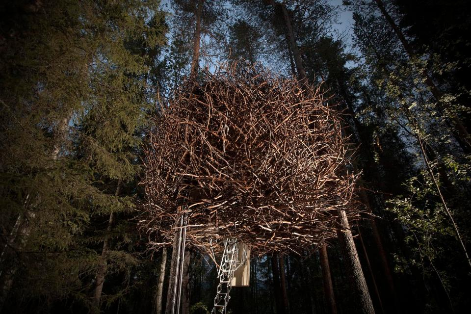 Gallery: The Bird's Nest at Treehotel