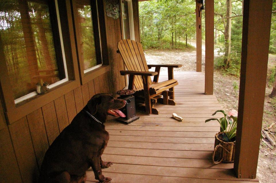 """Dave Fosson's """"ManCamp"""" cabin in the woods is 16' by 24' and has a sleeping loft. 