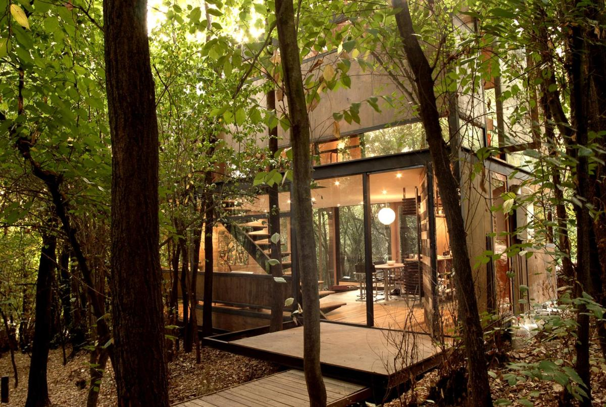 Casa apolo 11 a secluded forest home parra edwards for Forest house