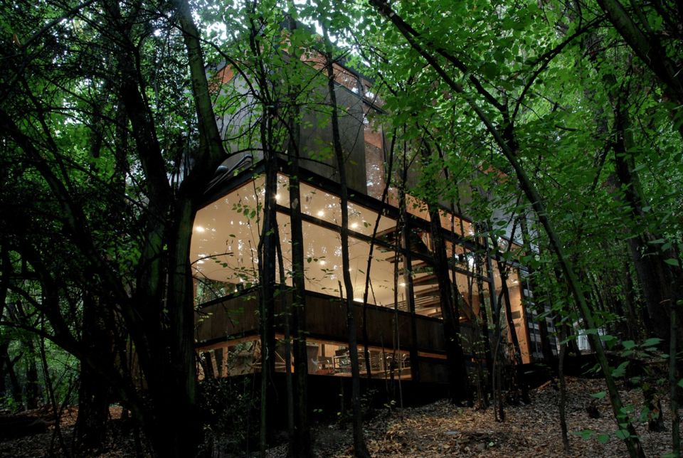 Casa Apolo 11 A Secluded Forest Home Parra Edwards