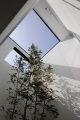 small house in Kashiba by Horibe Naoko Architect, courtyard