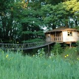 A rope bridge over a pond leads to the Bensfield Treehouse, equipped with a full kitchen and bathroom. | www.facebook.com/SmallHouseBliss