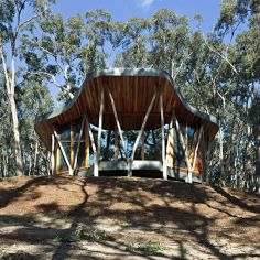 """Trunk House"" in Australia uses forked tree trunks to support the roof. It has 2 bedrooms in 915 sq ft. 