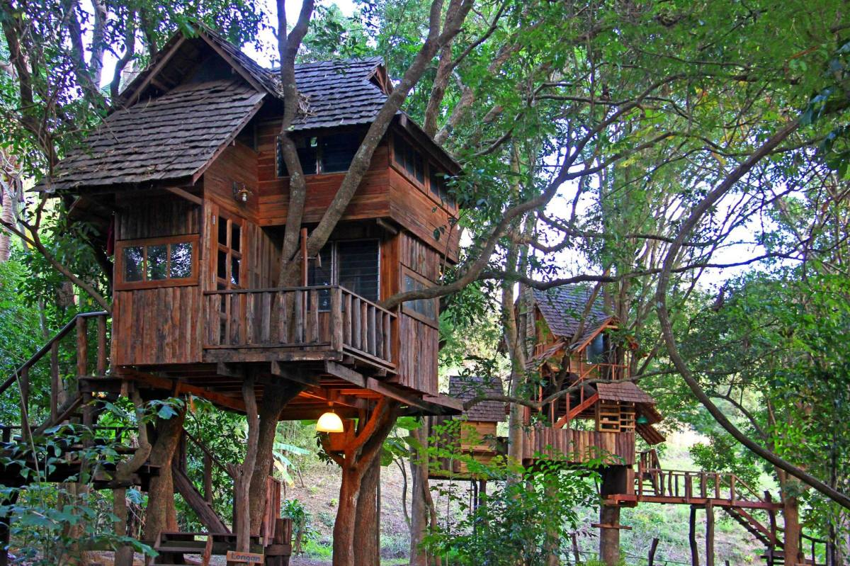Rabeang pasak chiangmai treehouse resort small house bliss for Small tree house