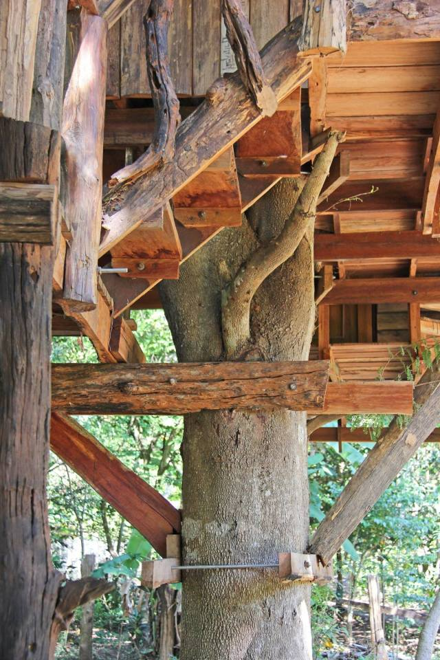 Treehouse at the Rabeang Pasak Chiangmai Treehouse Resort in northern Thailand. | www.facebook.com/SmallHouseBliss