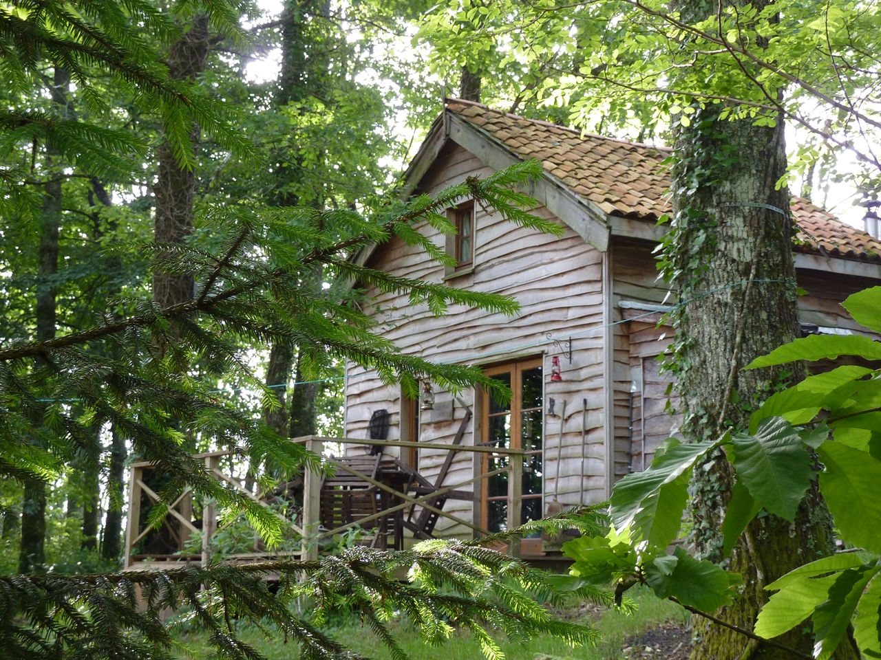 The Rustic Off Grid Woodsman S Cabin Small House Bliss