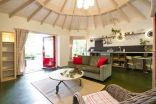 """""""Forest House"""" is a yurt-like tiny cottage with rafters radiating out from the center and an open studio floor plan. 