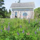 A vernacular coastal cottage on Grand Manan Island, New Brunswick. | www.facebook.com/SmallHouseBliss