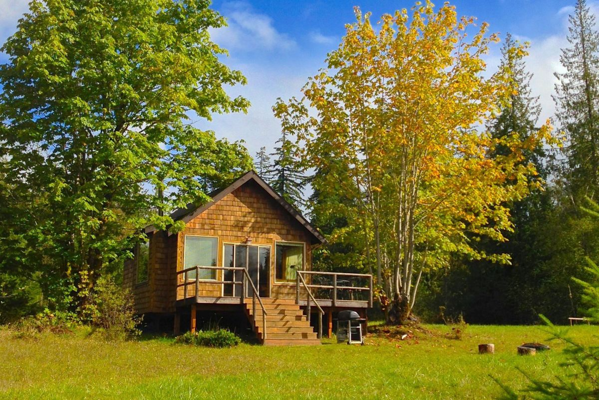 the pond cottage a small cabin tucked into a secluded forest meadow inside it - Small Cottage